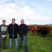 Having a look over a Tasmanian beef property are mainland butchers Wade Dowden, Jack Peacock and Joseph Ditrl.